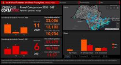 Painel Comparativo - 2020 e 2021