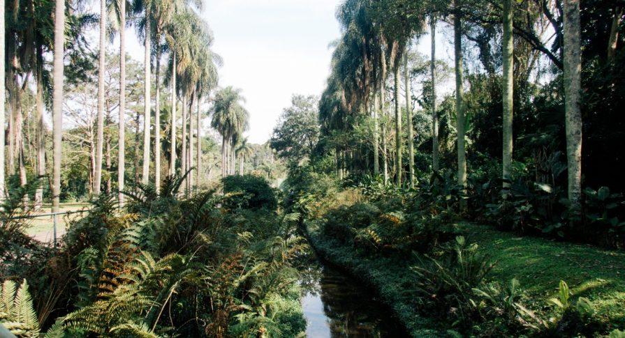 Entrada do Jardim Botânico