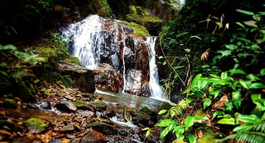 PESM Itariru - Cachoeira da Usina