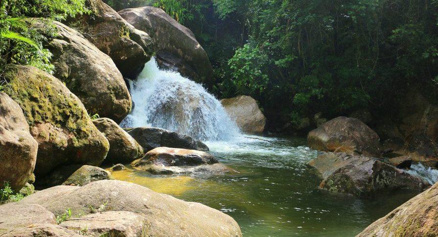 PESM Caraguá - Cachoeira Pedra Redonda - Trilha do Poção