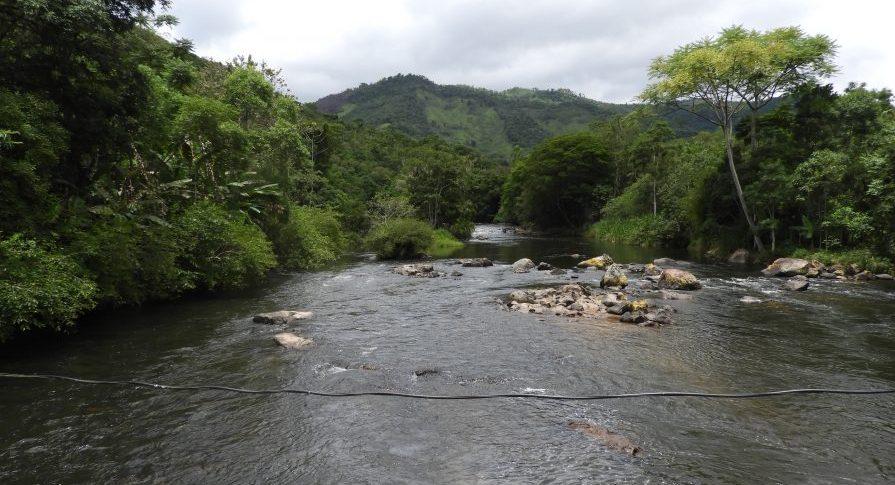 RDS Pinheirinhos - Corredeiras