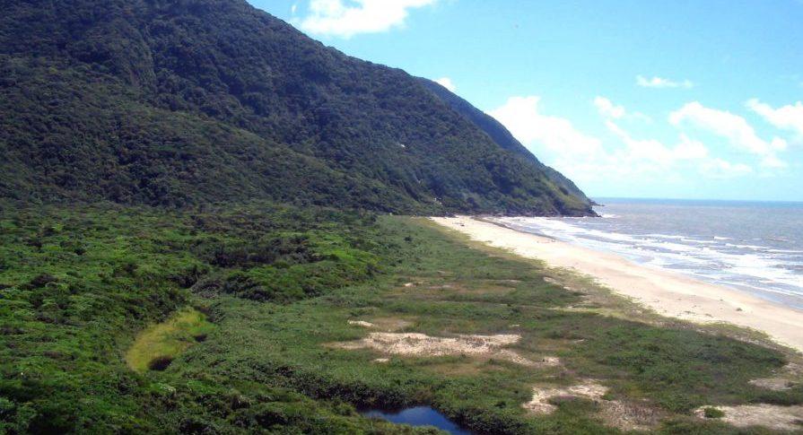Parque do Prelado - Costao da Praia da Jureia