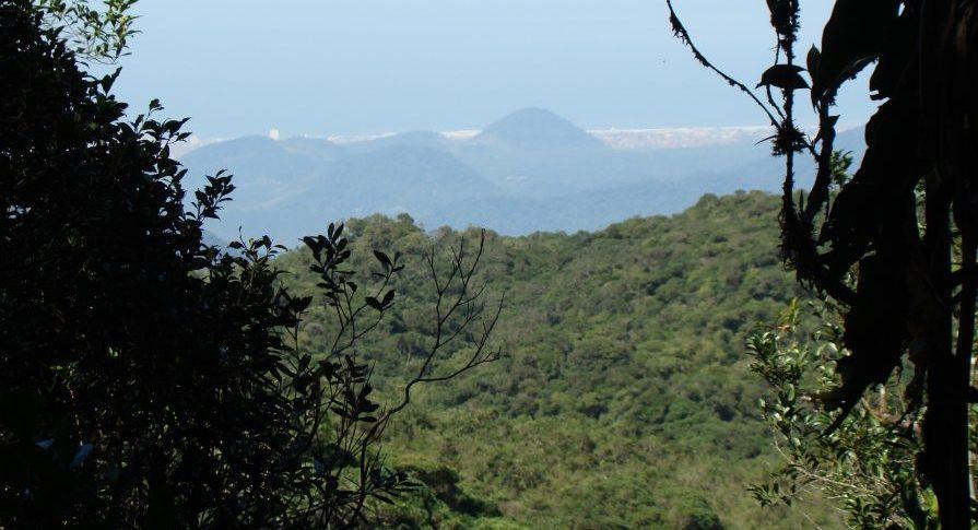PESM Curucutu - Vista da trilha