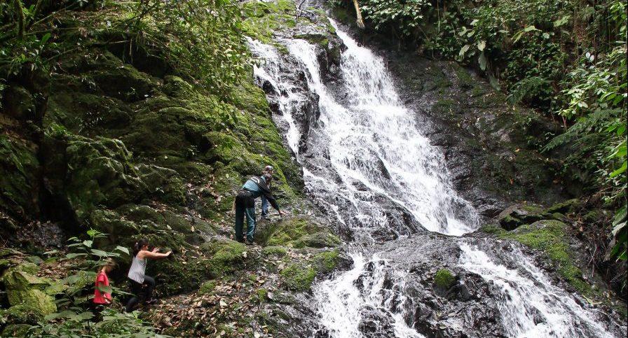 PE Intervales - Trilha e Cachoeira do Mirante