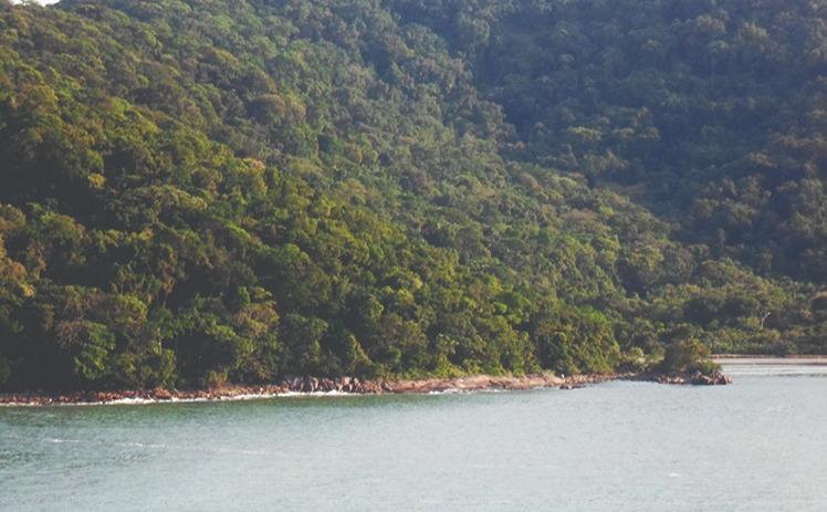 Costa - Parque Estadual Xixova Japui