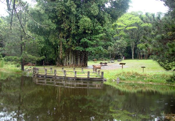 Parque Estadual Cantareira lago mirante