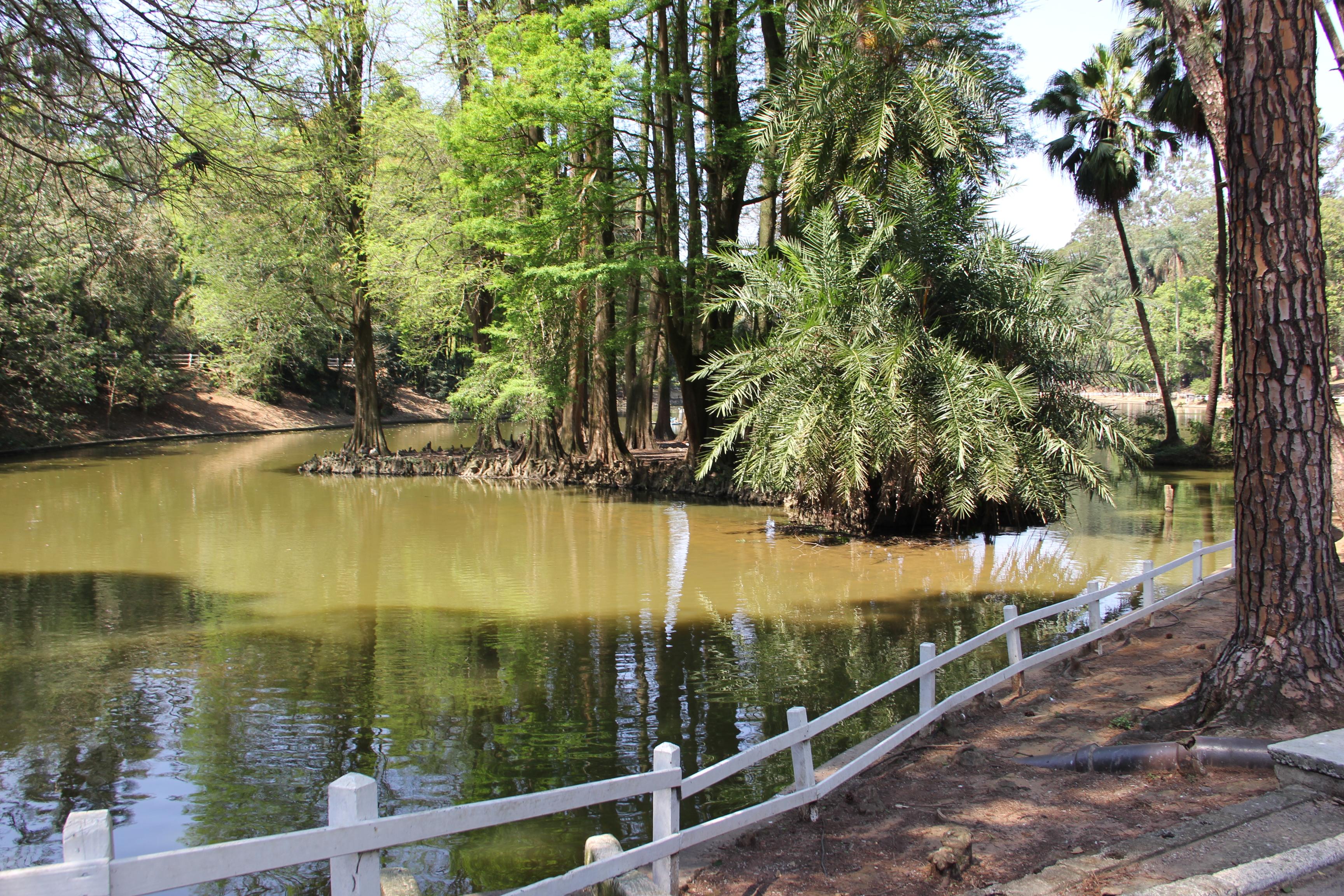 Parque Horto Florestal Lago